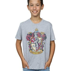 Harry Potter Garçon Gryffindor Distressed Crest T-Shirt 8