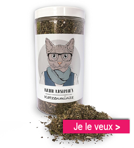herbe a chat personalgifter -  - Le noël des animaux