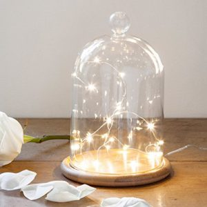 Lights4fun Grande Cloche en Verre Décorative avec 20 Micro LED Blanc Chaud 29