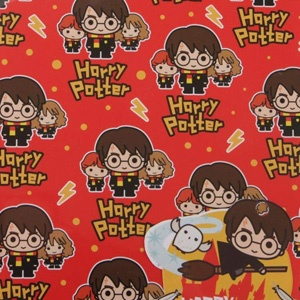 Papier cadeau harry potter