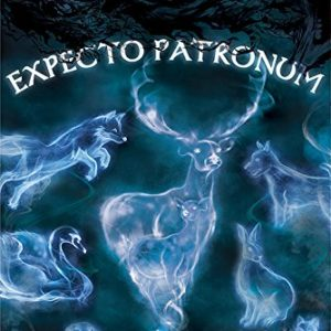 Wizarding World Harry Potter (Patronus) 61 x 91.5 cm Maxi Poster, Multicolore 22