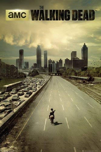 Tainsi The Walking Dead - Dead City Poster-11x17inch,28x43cm 1